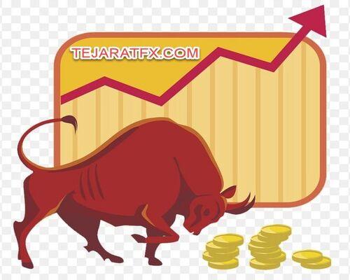 سرمایه در بازار فارکس